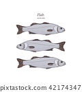 Hand Drawn Illustrations of fish. 42174347