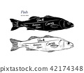 Poster fish cutting scheme lettering vector. 42174348
