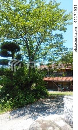 House Rural green 42174951