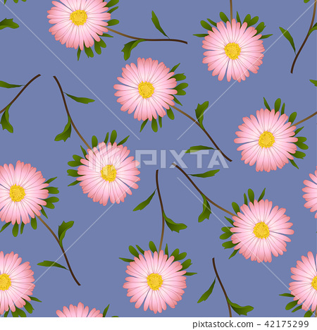 Pink Aster, Daisy on Purple Background 42175299