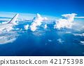 飞机 景观 景色 42175398