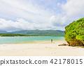 여름, 리조트, 이시가키 섬 42178015