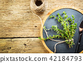 Close up view of thyme bunch 42184793