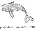 vector Whale for adult anti stress coloring pages. 42202284