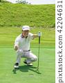 골프 이미지 42204631