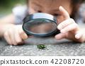 확대경, 돋보기, 관찰 42208720