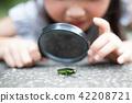 확대경, 돋보기, 관찰 42208721