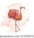 flamingo watercolor painting 42209074
