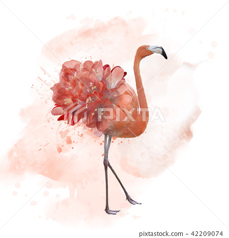 flamingo watercolor painting 42209074
