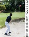 골프, 여성, 여자 42216512