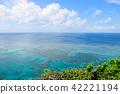 珊瑚礁海夏天 42221194