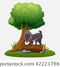 Cartoon mandrill baboon under tree 42221766