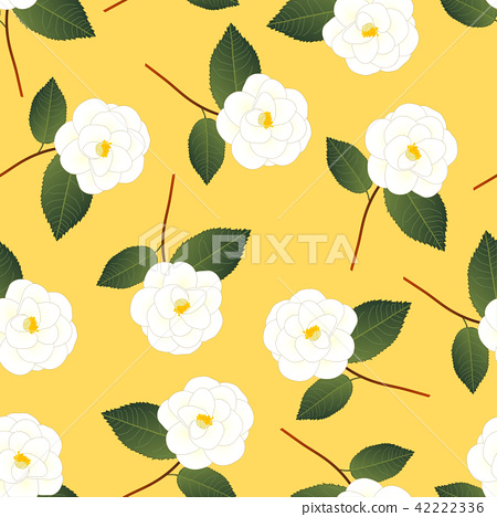 White Camellia Flower on Yellow Background 42222336