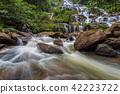 Mae Ya waterfall 42223722