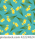 Yellow Daffodil - Narcissus Blue Teal Background. 42224624