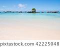 해변, 비치, 바다 42225048