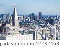 니시 신주쿠에서 본 도쿄의 도시 풍경 42232468