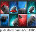 sport vector puck 42234085