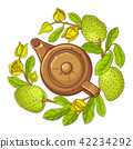 soursop, fruit, tea 42234292