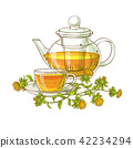 safflower tea vector illustration 42234294