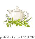 herb, sage, herbal 42234297