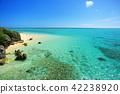 바다, 해변, 비치 42238920