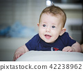 Sweet baby boy 42238962