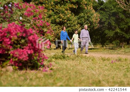 Grandpa And Grandma Walking In Park With Boy 42241544