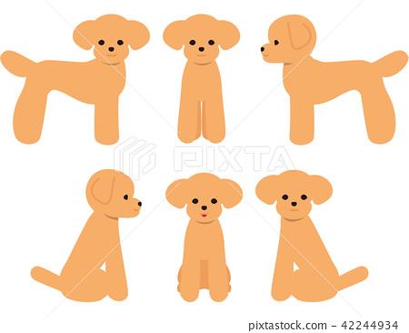 Dog toy poodle pose 42244934