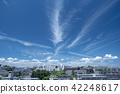 여름 하늘 42248617