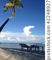 หาดทราย,ต้นปาล์ม,ท้องฟ้าเป็นสีฟ้า 42248927