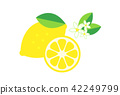 lemon, lemons, fruit 42249799