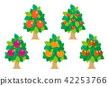fruit, fruits, wood 42253766