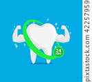 Very Strong Muscle Healthy Tooth 24 Hours 42257959