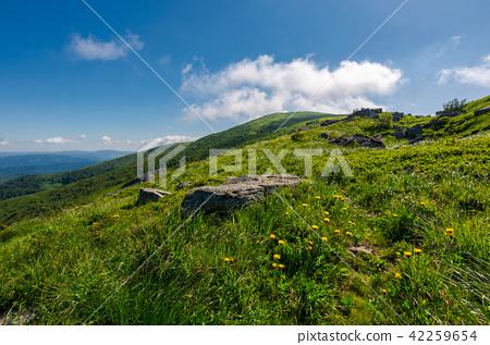 rocks on grassy hillside of the mountain 42259654
