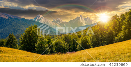 composite summer landscape in mountains at sunset 42259669
