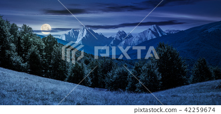 composite summer landscape in mountains at night 42259674