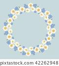 blossom, chamomile, flower 42262948