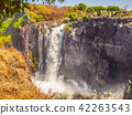 Victoria Falls on Zambezi River. Dry season. Border between Zimbabwe and Zambia, Africa 42263543