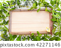 lumber, wood, grain of wood 42271146