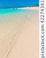 宮古島海 42274361