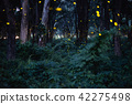 Image of Firefly flying in the night forest 42275498