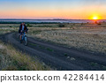 man ride a bike in the country field at sunset 42284414