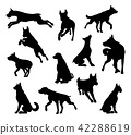 dog, silhouette, animal 42288619