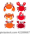 crab vector collection design 42289667