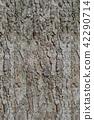 Background image - bark texture 42290714