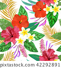 backgrounds seamless hibiscus 42292891