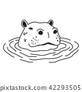 Hippo vector hippopotamus icon logo swim cartoon 42293505
