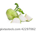 green fresh kohlrabi with slices isolated on white 42297062