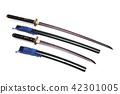 Katana and wakizashi Japanese swords isolated in w 42301005